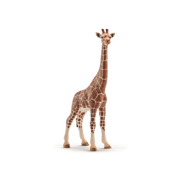 Image of   Schleich Giraf - Hun