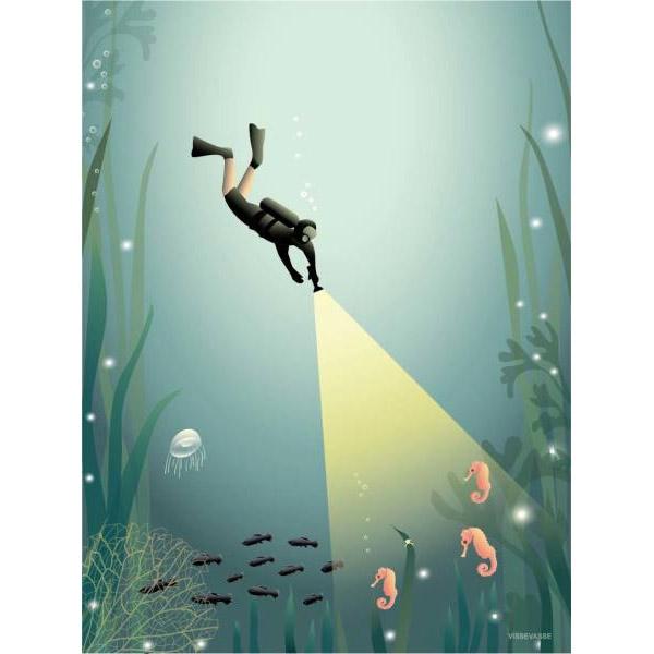 ViSSEVASSE Plakat The Diver